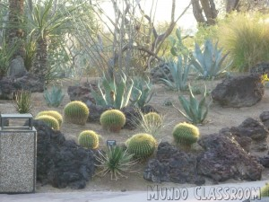 image: Ethel M Chocolate Factory Botanical Cactus Garden
