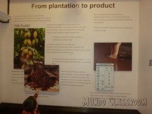 image: From Cocoa Beans to Chocolate